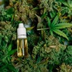 Columbia Cannabis Dispensary Staff Makes History