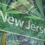 You May Be Able to Legally Buy Weed Soon After the New Jersey Election