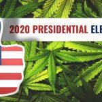 Legalizing Cannabis: Trump vs. Biden