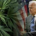 Biden: We Must Decriminalize Marijuana