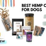 The Best Hemp Chews for Dogs of 2021 [UPDATED]