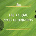 CBG vs CBD, apart or combined?