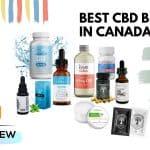Best CBD Brands in Canada