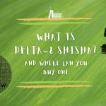 What is Delta-8 Shisha and Where Can You Buy One?