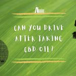 Can You Drive After Taking CBD Oil?