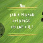 Can A Person Overdose on CBD Oil?