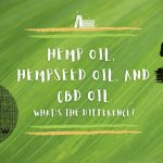 Hemp Oil, Hempseed Oil, and CBD Oil - What is the difference?